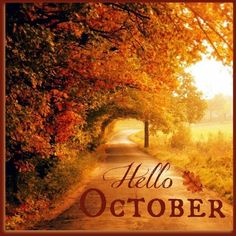 Delightful Hello October Month October Hello October October Quotes