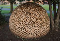 Have a look on these amazing firewood arts