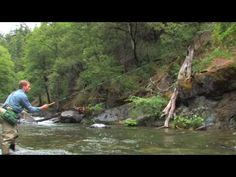 I have to learn....Tenkara fly-fishing A great video from a great instructor and one of my good friends, Daniel Galhardo.