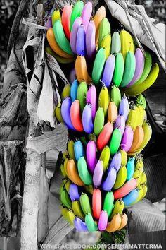 Rainbow with color splash. Color Splash, Color Pop, Color Change, Splash Photography, Color Photography, Woman Photography, World Of Color, Color Of Life, Rainbow Art