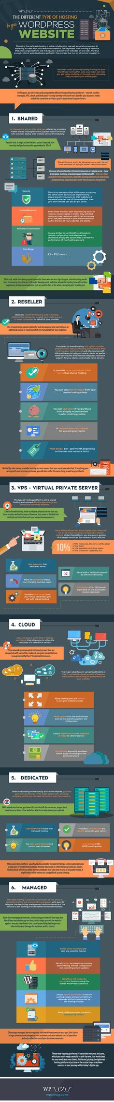 The Different Types of Hosting for Your WordPress Website Infographic