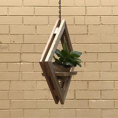 Double recycled Victorian Ash timber wall planters designed for the asthectics of simplicity and elegance. Ideally suited to hang indoors or an outdoor room und Hanging Planters Hanging Planters Hanging Succulents, Hanging Planters, Wall Planters, Hanging Flower Pots, Rustic Planters, Indoor Planters, Timber Walls, Plant Shelves, Planter Boxes