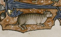 Medieval illustration on parchment from the 'Ormesby Psalter', East-Anglia, c. 1300; c. 1310