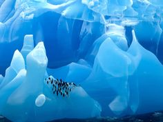 There truly is nowhere else on Earth like this pristine world of ice.
