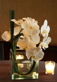 floral arrangement of orchids Arte Floral, Deco Floral, Floral Design, Orchid Centerpieces, Orchid Arrangements, Wedding Centerpieces, White Orchid Centerpiece, Modern Floral Arrangements, Ikebana
