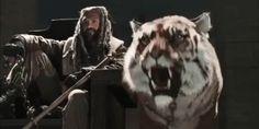 The Walking Dead - S08E04 10010178.gif (480×240)