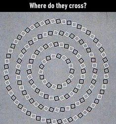 Brain Illusions, Optical Illusions Pictures, Funny Illusions, Illusion Pictures, Amazing Optical Illusions, Eye Tricks, Brain Tricks, Funny Mind Tricks, Mind Puzzles