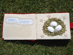 An example of a non-fiction Tactile Book
