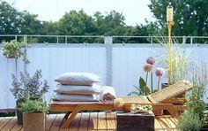 Balkonpflanzen - Tipps für jeden Balkon - [SCHÖNER WOHNEN]
