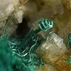 Malachite (curly) on Dolomite from Mockleiten Mine, Tyrol, Austria mw Minerals And Gemstones, Crystals Minerals, Rocks And Minerals, Stones And Crystals, Minerals For Sale, Fractal, Mineral Stone, Rocks And Gems, Natural Crystals