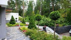 Front Gardens, Outdoor Gardens, Garden Park, Outdoor Living, Outdoor Decor, Garden Inspiration, Garden Ideas, Evergreen, My House