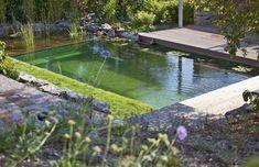 Biotop natural living pools