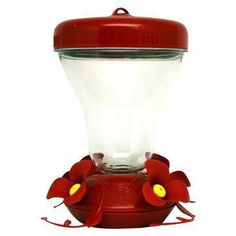 Humming bird feeder. Has perches on it so you  Can watch them eat while they sit still !