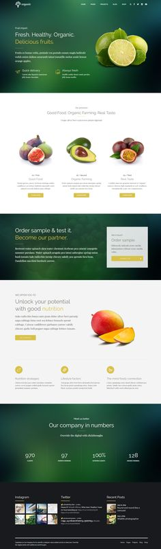 Organic Food - Nutritionist \ Food WordPress Theme Wordpress - Delivery Order Sample