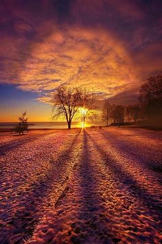 Shadows of nature . by Phil Koch Landscape Photography, Nature Photography, Photography Tips, Digital Photography, Cool Pictures, Beautiful Pictures, Ciel Nocturne, Pics Art, Beautiful Sunrise