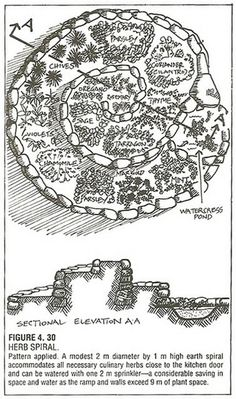 to Build a Herb Spiral Garden Herb Spiral concept drawing showing side elevation with an optional pond at the bottom.Herb Spiral concept drawing showing side elevation with an optional pond at the bottom. Permaculture Design, Permaculture Principles, Herb Spiral, Spiral Garden, Vertical Garden Design, Herb Garden Design, Herbs Garden, Dry Plants, Herbal Plants