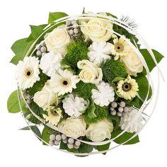 Een prachtig wit boeket samengesteld uit elegante zachte witte rozen en Gerbera madeliefjes. De verse bloemen worden geaccentueerd met witte dennenappels, bessen, dennentakjes en ander groen.