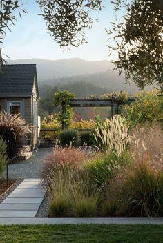 perennial-grasses-poudolf-landscape-napa-gardenista