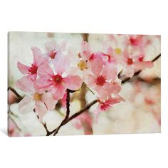 """East Urban Home Cherry Flowers I Photographic Print on Wrapped Canvas Size: 26"""" H x 40"""" W x 0.75"""" D"""