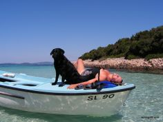Top dog friendly beaches in Croatia Small Pine Trees, Shade Tent, Dog Shower, Dog Friends, Beaches, Dogs, Croatia, Sands, Pet Dogs