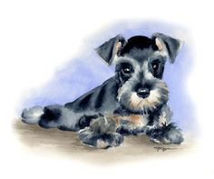 Watercolor Paintings Of Dogs | MINIATURE SCHNAUZER PUPPY Dog Watercolor Painting ArtPrint Signed by ...
