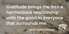 Gratitude brings me into a harmonious relationship with the good in everyone. #AffirmationoftheDay #Inspiration #Dherbs