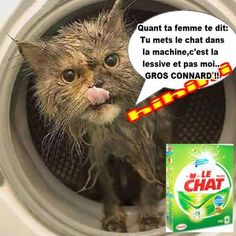 image humour animaux  | ANIMAUX RIGOLOS - Page 3