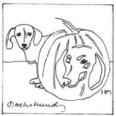 Longhaired Dachshund Line Art