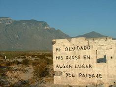 #DíaMundialDeLaPoesía