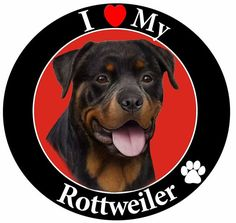 E and S Pets Car Magnet, Rottweiler ** For more information, visit image link.