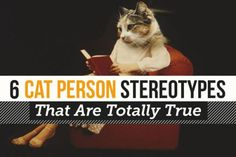 """6 """"Cat-Person"""" Stereotypes That Are Totally True"""