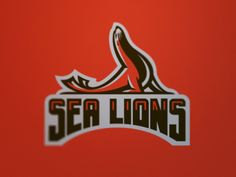 Bay Area Sea Lions