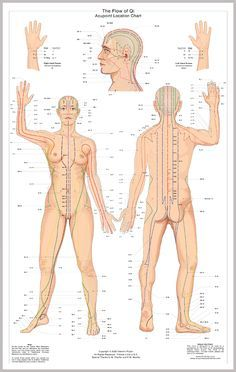 Meridians Chinese Medicine Theory Description