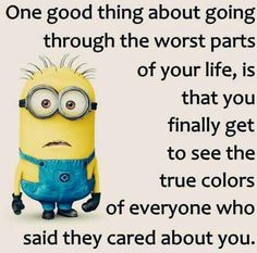15 Funny Memes Minions-Life Humor and Hilarious memes - HumorTrip Funny Minion Pictures, Funny Minion Memes, Minions Quotes, Minion Humor, Funny Pics, Citation Minion, Trauma, Minions Love, Minion Stuff