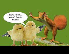 #ChicksWithGuns