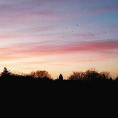 Sonnenuntergang traumhaftes Wetter  zum Joggen und das am 23.12   #weihnachtszeit #adventzeit #frühlingsgefühle #sonnenuntergang #nature #fitness #fitnessgirls #running #joggen #asics #nike #sport #skyporn #amazing #bestoftheday #sunset #germany #korschenbroich by _iamjms_