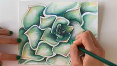 Learn how to draw a jelly donut and blend realistic color with oil pastels. A fun and easy technique with delicious results! Colour Pencil Shading, Blending Colored Pencils, Shading Drawing, Colored Pencil Artwork, Plant Drawing, Drawings With Colored Pencils, Crayola Colored Pencils, Cool Art Drawings, Pencil Art Drawings