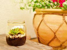My DIY garden in jar.