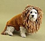 """Image of King of the Beasts (Lion) Dog Sweater = free pattern for doggie sweater and mane/hood on lionbrand.com patterns.  Great pattern for your chunky yarn stash.  Have a crazy """"circus dog"""" toy terrier that I would love to make this for!"""