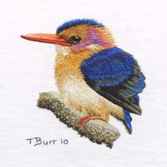 Embroidered Little Pygmy Kingfisher by Trish Burr Embroidery Store, Bird Embroidery, Simple Embroidery, Embroidery Patterns, Pdf Patterns, Bird Patterns, Advanced Embroidery, Cross Stitch Bird, Thread Painting