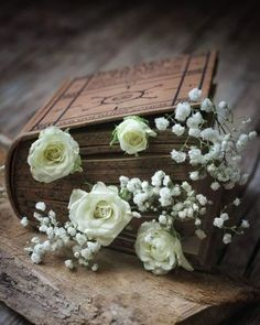 Book Aesthetic, Aesthetic Pictures, Art Et Nature, Book Flowers, Book Letters, Coffee And Books, Background Pictures, Flower Backgrounds, Book Photography