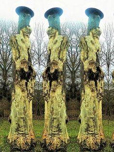 'Baumskulpturen II' von Martin Blättner bei artflakes.com als Poster oder Kunstdruck $15.68