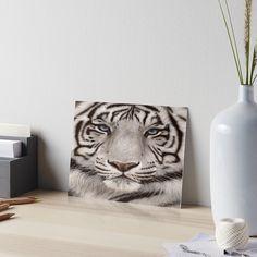 #Animal Wall Arts, #Tigers wall Arts Tigers, Vase, Wall Art, Animals, Home Decor, Animales, Decoration Home, Animaux, Room Decor