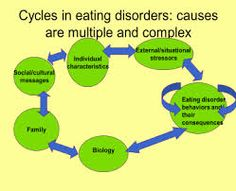 Therapy for eating disorders: many factors that contribute such as social expectations, family & personal background/experiences. Counseling Psychology, School Psychology, Thoughts On Education, Educational Thoughts, Overeating Disorder, High School Counseling, Eating Disorder Recovery, How To Eat Better, Mental Disorders