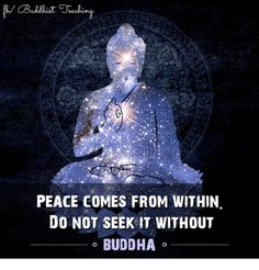 Peace comes from within. Do not seek it without. Zen Buddhism Quotes, Catchy Phrases, Buddhist Teachings, George Carlin, Buddha Quote, Buddha Meditation, Taoism, World Peace, Finding Peace
