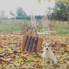 Fall with Laïta - Thank you @aliciavaa for this cute picture !  Tag #mylaïta to be featured on our Instagram !