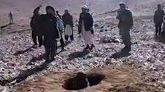 La joven que murió lapidada en Afganistán acusada de haber cometido adulterio - BBC Mundo Bbc News, Penguins, Animals, Ideas, World, Rural Area, Women, Animales, Animaux