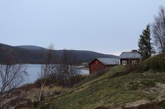 Finnish Lapland – The perfect balance of nature and culture - Global Brunch Brunch, See The Northern Lights, Arctic Circle, Barns, The Incredibles, Houses, Cabin, Adventure, Landscape