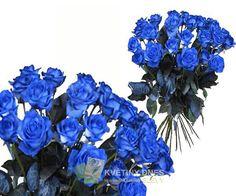 Modrá růže Květiny online - květinářství Praha Pankrác - netradiční kytice, dárky pro muže, dárkové koše, ovocné kytice. Pro ženy čerstvé řezané růže, Holandské tulipány, gerbery. Rozvoz květin.