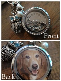Origami Owl locket in memory of your furry friend  For information on hosting a jewelry bar to earn free gifts or becoming a designer contact me at www.facebook.com/herownlittlefairytale To order go to: www.herownlittlefairytale.OrigamiOwl.com